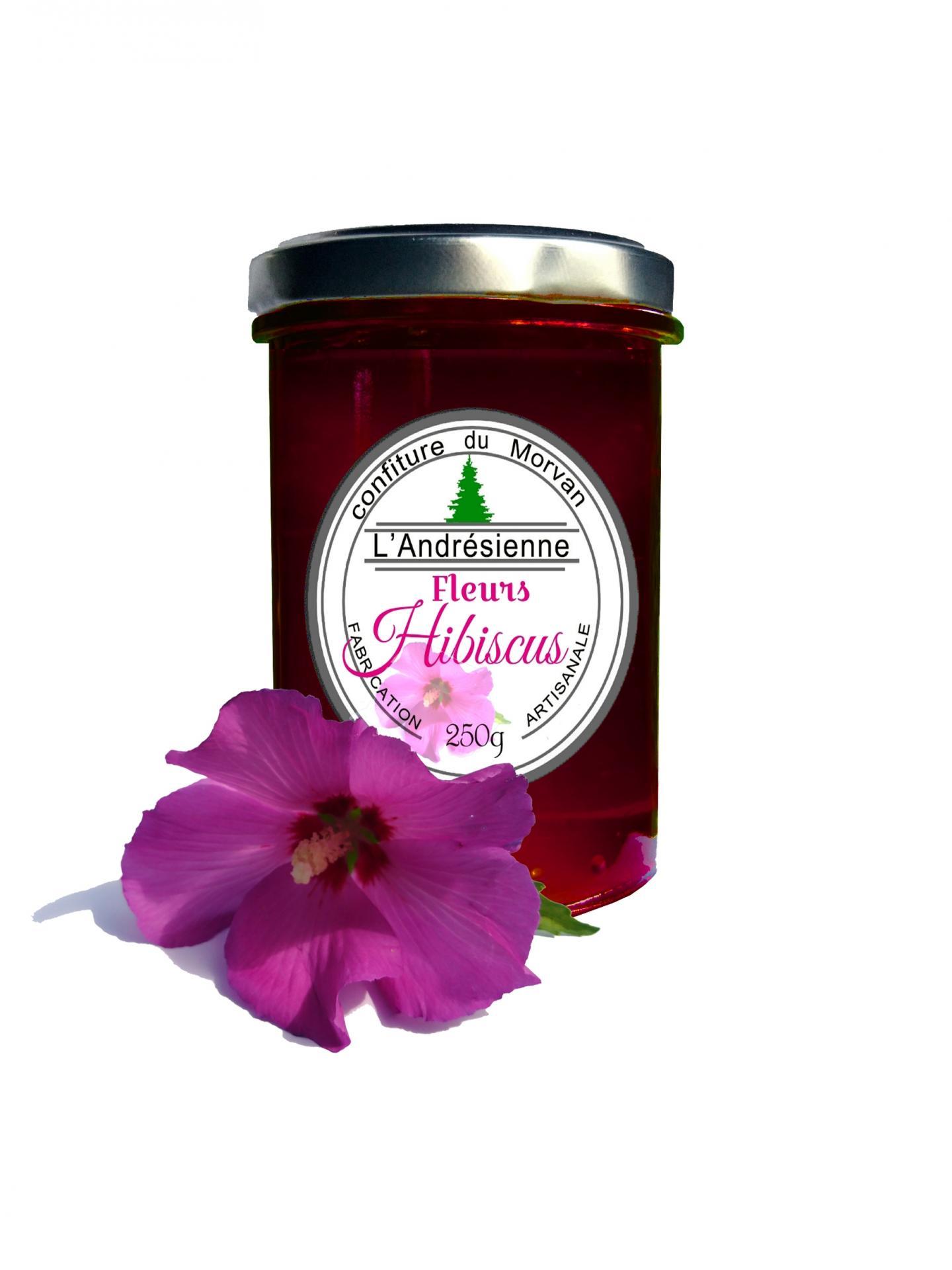 Pot hibiscus 02